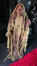 More details for halloween animated swamp hag