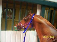 Jaapi Grasshopper Pie halter w//lead fit Breyer CM #1