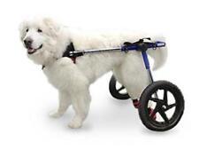 Walkin' Wheels