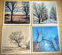 Approx 4 inch Ceramic Tile Coasters Set of 4 original Photograph with resin coat