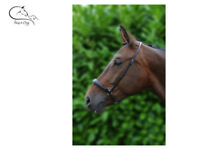 Hy Leather Padded Drop Hannover Noseband Black/Brown Pony/Cob/Full  FREE P&P