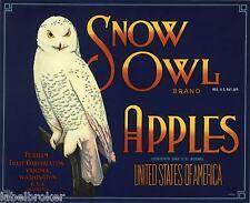 SNOW OWL APPLE CRATE LABEL YAKIMA WASHINGTON BLUE 1940S GENUINE ADVERTISING