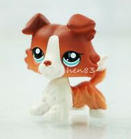 Hasbro Littlest Pet Shop LPS 1542 Rare Brown White Collie Puppy Dog Blue Eyes