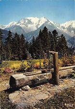 BR23417 au pais du Mont Blanc   france