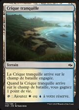 MTG Magic FRF FOIL - Tranquil Cove/Crique tranquille, French/VF
