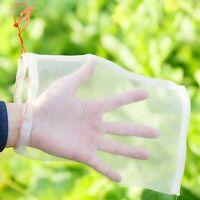 Garden Netting Bags Vegetable Fruit 50 Pcs Grapes Apples Pest Protection Pouch