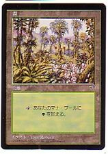 MTG 20X JAPANESE MIRAGE FOREST NM/M ~~ASIAN VHTF ART #C