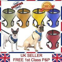 LTG Dog Puppy Harness Pet Control Padded Soft Mesh Walk Collar Safety Strap Vest
