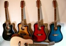 Western Gitarre 12 saitig mit Tonabnehmer und EQ in 6 Farben