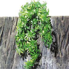 JBL TerraPlanta Cannabis - Reptile Plant (Medium) For Terrarium - @ BARGAIN P...