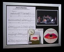 RED HOT CHILI PEPPERS Soul Squeeze LTD TOP QUALITY CD FRAMED DISPLAY+FAST SHIP