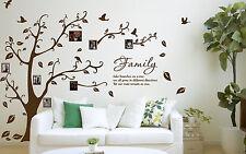 Family Photo Tree & Birds Art Vinyl Wall Sticker, Home Wall Decal- HIGH QUALITY