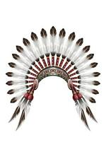 Native American Indian Feather Headdress Art Print Poster 24x36 inch