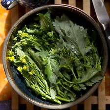 500+ Broccoli Raab (Rabe, Rapini) Seeds- 2018 Seeds      $1.69 Combined Shipping