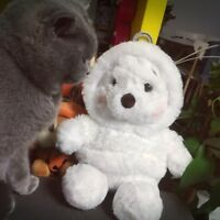 New Disney Store Japan Winnie the Pooh Plush Doll White Pooh
