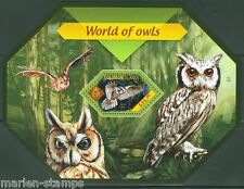 SOLOMON ISLANDS  2014 WORLD OF OWLS   SOUVENIR SHEET  MINT NH