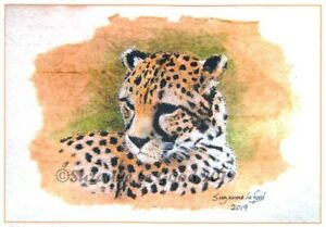 Cheetah art print big cat limited edition from original painting Suzanne Le Good