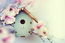 BEAUTIFUL BIRD BOX CANVAS PICTURE #48 STUNNING FLORAL FLOWERS A1 CANVAS WALL ART