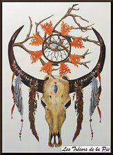 TATOUAGE TEMPORAIRE TATOO XXL - Body art - Tête de taureau & plume - Multicolore