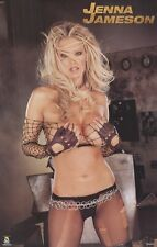 JENNA JAMESON ~ BLACK LINGERIE 22x34 PINUP POSTER Vivid Video NEW/ROLLED!
