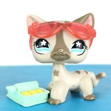 Authentic Littlest Petshop 468 Cat Short Hair Kitty Pet Shop Chat Europeen LPS