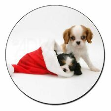 Christmas Sentiment Dog Fridge Magnet Animal Breed Gift Ad-skc8fm