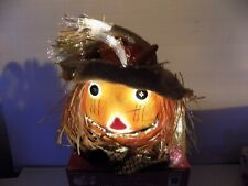 Fiber Optic Halloween Fall Pumpkin Scarecrow Jack-O-Lantern LightUp Autumn Decor