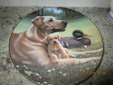 Like Father Like Son By Jim Lamb Collectible Plate-The Hamilton Collection-1991