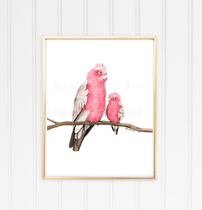 Mother and Baby Galah Print - watercolour bird art australian animal prints