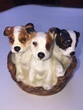 Vintage Royal Doulton Jack Russell Terrier Pupplies in Basket-Hn 2588