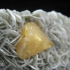 Perfect Pyramid Scheelite on Muscovite matrix collectable mineral China CM361410