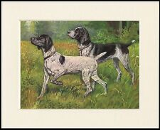 German Short Haired Pointer Notebook by Curiosity Crafts