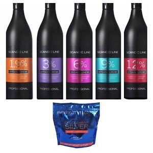 Blondierung Set 500 g 1 L Creme Oxydant Entwickler 6 9 12 % Blondierpulver grau
