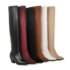 Women's Stretchy Goth Pointy Toe Over Knee Thigh Boot Fashion Chunky Heels Shoes