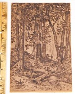 """Mary Nimmo Moran 1888 """"Interior Of California Forest"""" Etching on Wood signed"""