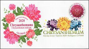 20-086, 2020, Chrysanthemum, Digital Color Postmark, First Day Cover, Internatio