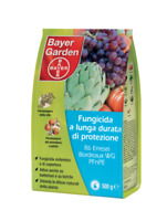 BAYER FUNGICIDA SISTEMICO R6 Bordeaux WG PFnPE | Protect 500 GR