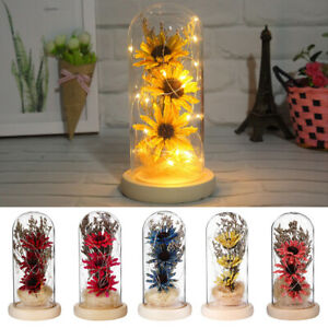 Dried Flower Glass Bottle Micro Landscape Creative Never Withered Flowers Modern