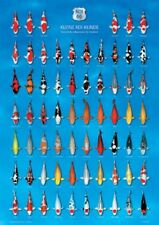 Koi Poster 66 - Kleine Koi Kunde Bestimmung