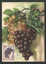 TUNESIEN MK 1957 FLORA TRAUBE GRAPE UVA WINE MAXIMUMKARTE MAXIMUM CARD MC d7759