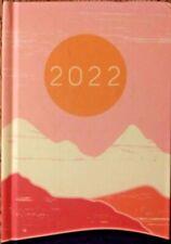 2022 Pink Day Planner Daily Organizer Calendar Password Log New 6 X 4 Free Sh
