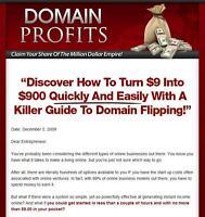 Turnkey Domain Profits Website Script Autopilot Business