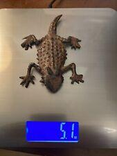 Metal Horny Toad Lizard