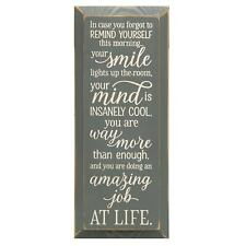 """Inspirational Plaque Wall Sign, In Case You Forgot Daily Affirmation, 18"""" x 7"""""""