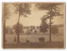 Antique Victorian Photograph Crane's Orchard DALTON MA Massachusetts Landscape