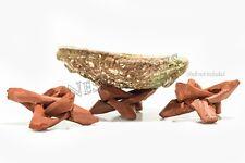 "Carved Tripod Wood Stand Holder 2""  ( 3 pcs )"