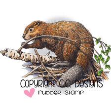 Beaver, Cling Unmounted Stamp 2.5'' x 4.1'' C.C. DESIGNS, JD1077