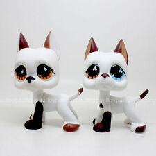 2pcs #750 #577 Rare LPS Littlest Pet Shop White & Brown Great Dane DOG Puppy