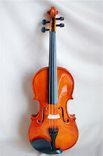 4/4 New Solid Wood Violin /Bow /Rosin /Case + Recorder