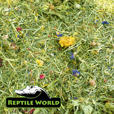 Reptile World Tortoise Edible Bedding 100g - Flower & Plant Bedding Food